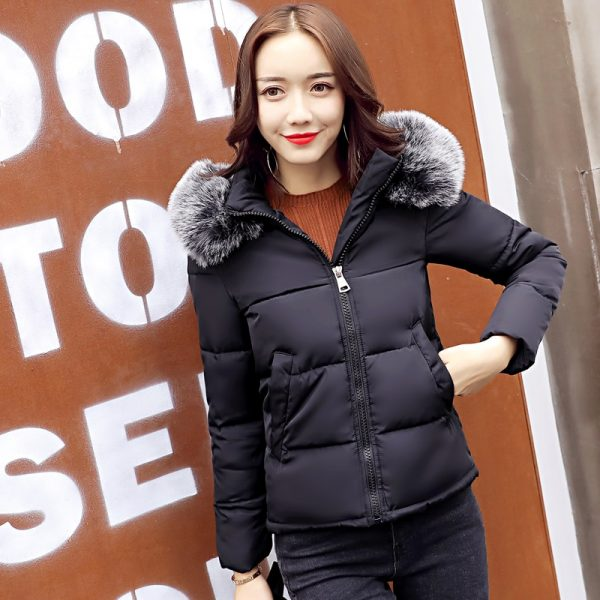 Big Fur Collar Warm Hooded Winter Jacket